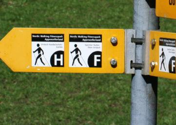 Symboldbild Wegweiser: Welchen Weg gehe ich?