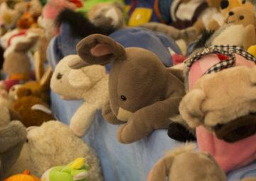 Plüschtiere, die an der Kinderartikelbörse auf einen neuen Besitzer warten