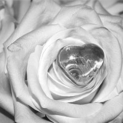 Eine Rose mit Herz als Sinnbild für die Liebe