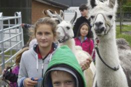 Kinderherbstwoche Rütihof 2017 Lamatrekking