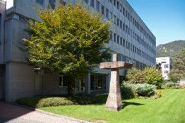 Kloster Ingenbohl