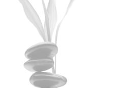Symbolbild Shibashi