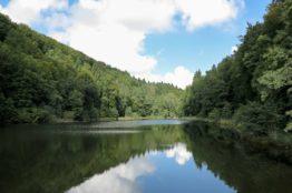 Rentierwanderung 7/2017  Spreitenbach - Egelsee - Reppischhof 9