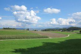 Rentierwanderung 7/2017  Spreitenbach - Egelsee - Reppischhof 13