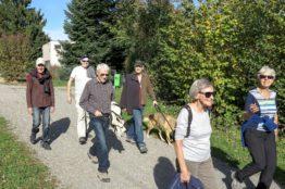 Rentierwanderung 8/2017  Wettinger Stausee 9
