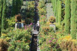 Vereinsausflug der Frauengemeinschaft St. Sebastian zum Rheinfall und zur Insel Mainau 10