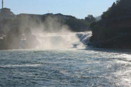 Vereinsausflug der Frauengemeinschaft St. Sebastian zum Rheinfall und zur Insel Mainau 1