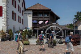 Rentierwandung 5/2019 zur Mitte des Kantons Aargau 14