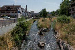 Rentierwandung 5/2019 zur Mitte des Kantons Aargau 15
