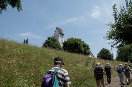 Rentierwandung 5/2019 zur Mitte des Kantons Aargau 16
