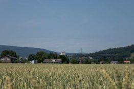 Rentierwandung 5/2019 zur Mitte des Kantons Aargau 17