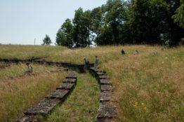 Rentierwandung 5/2019 zur Mitte des Kantons Aargau 21