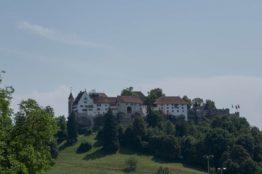 Rentierwandung 5/2019 zur Mitte des Kantons Aargau 23