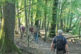 Fusswallfahrt zum Kloster Fahr 5