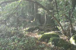 Fusswallfahrt zum Kloster Fahr 6