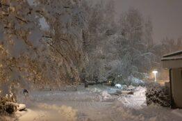 Winterimpressionen 10