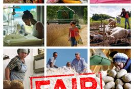 Gemeinsam ins Kino: Fair Traders am 20.2.