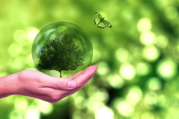 Erwachsenenbildung – Vortrag «Good News für eine nachhaltigere Welt»